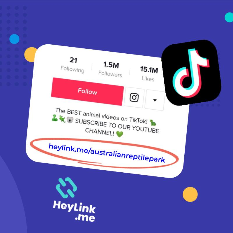 How To Add Clickable Link In Tiktok Bio In 2020 Using Heylink Me Blog Faq And Help